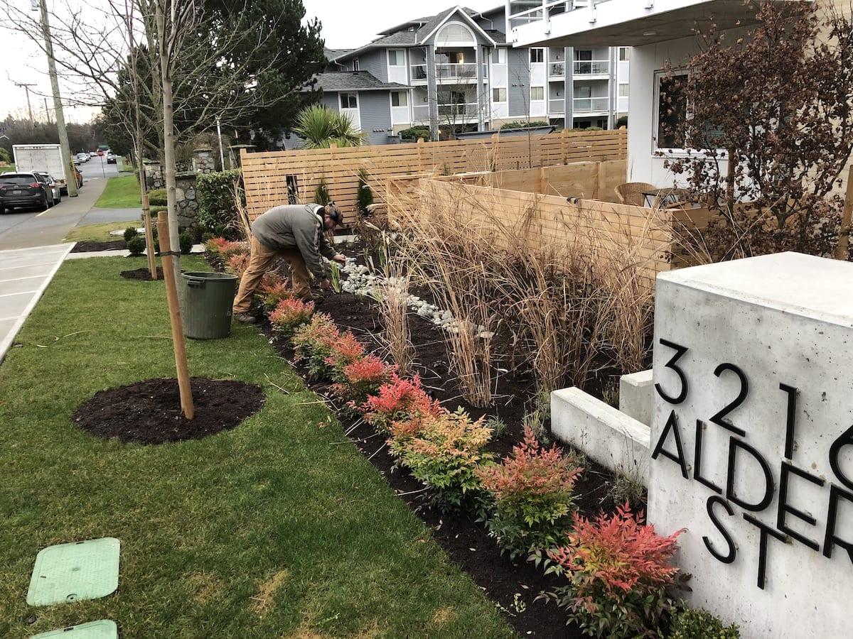 Gardening services Victoria Strata New landscape